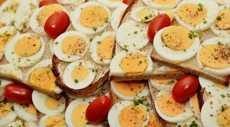 דיאטת חלבונים ראשית