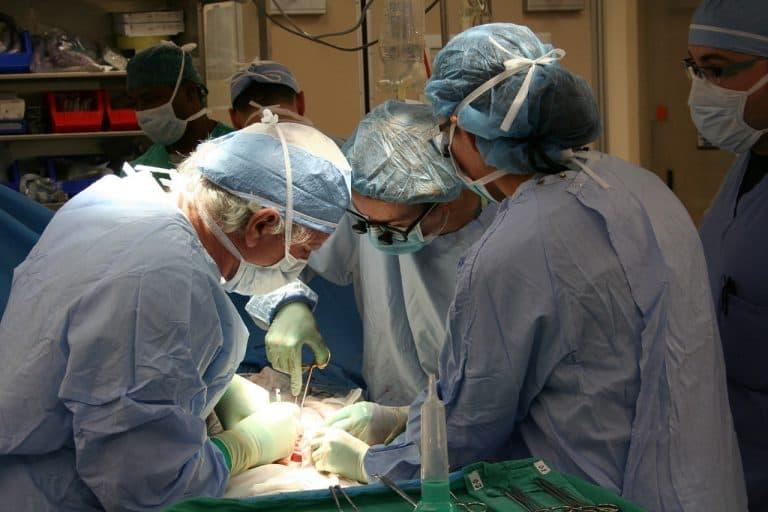 ניתוח ראשית